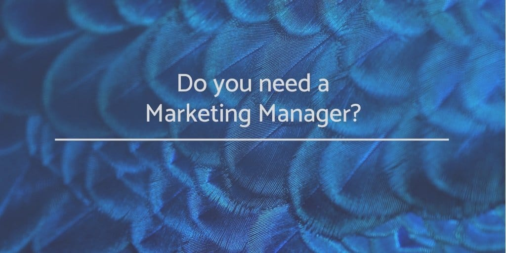 Do you need a marketing manager?