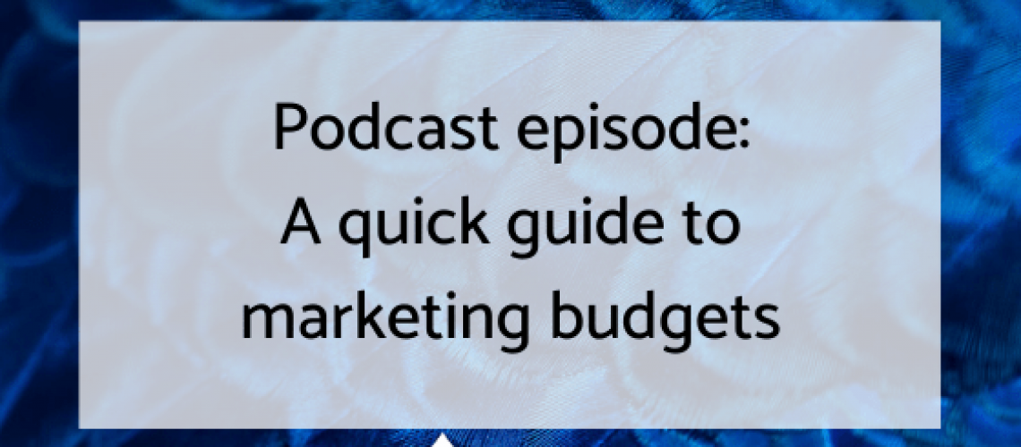 Marketing budgets podcast ep blog graphic