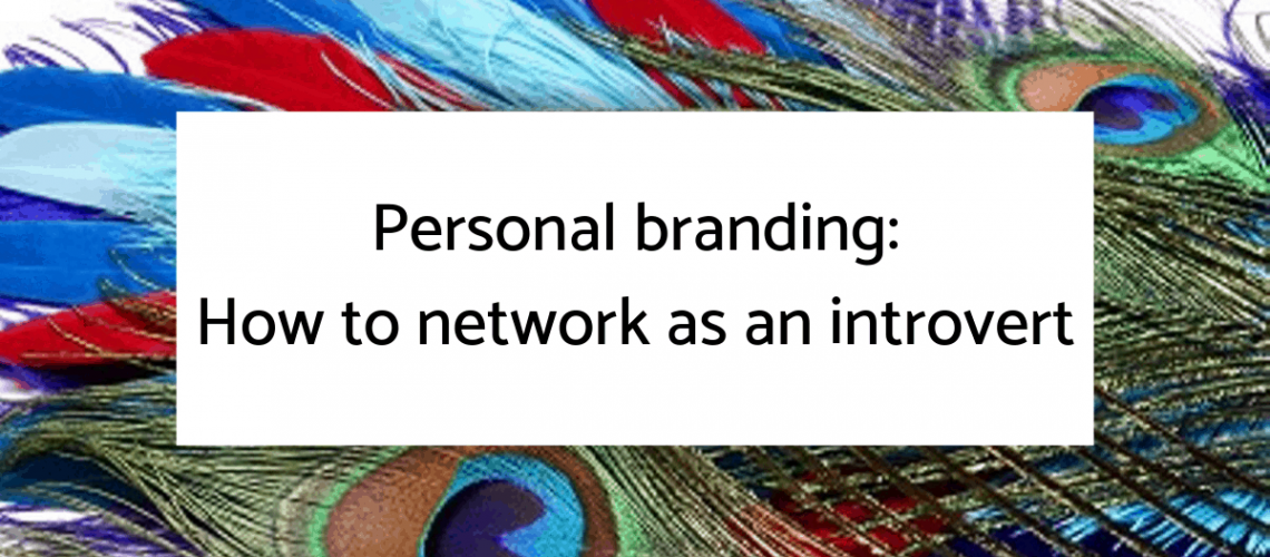 Networking for introverts blog graphics